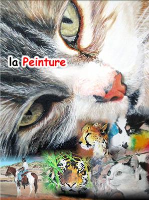 Photos tpeinture pti
